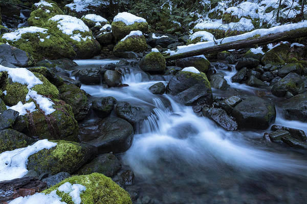 Photograph - Snow, Moss, Water Over Rocks by Belinda Greb