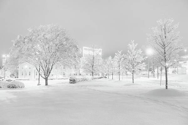 Photograph - Snow On Pettigrew by Ben Shields