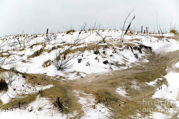 Down The Shore Photograph - Snow On The Dune At Long Beach Island by John Rizzuto