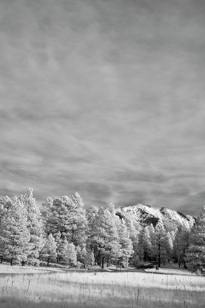 Flagstaff Photograph - Snow On The Mountain In Flagstaff by Jon Glaser