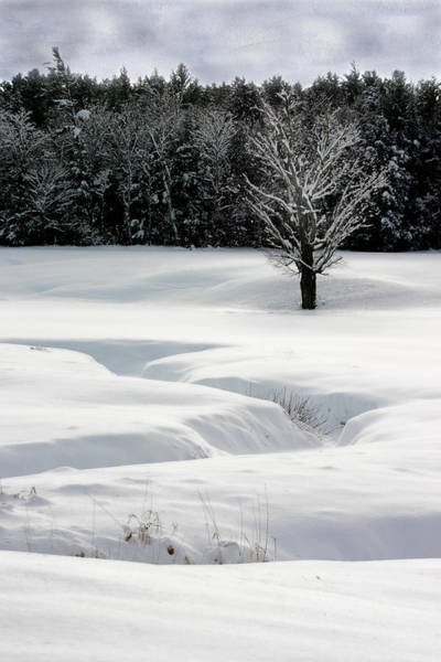 Photograph - Snow On The Oxbow by Wayne King