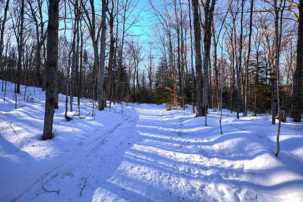 Photograph - Snow On The Trail by David Patterson