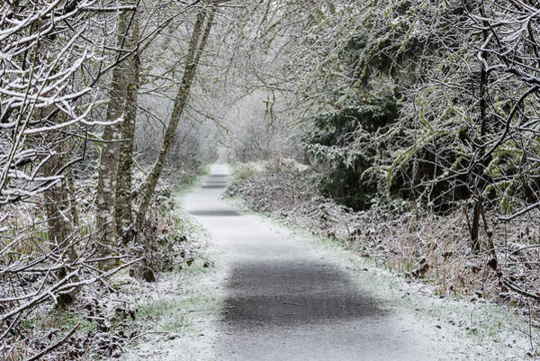 Photograph - Snow On The Trail by Robert Potts