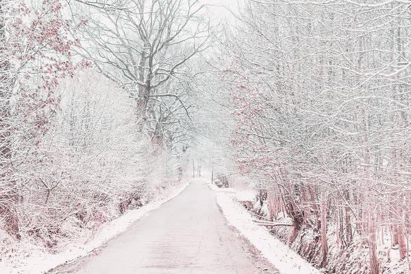 Photograph - Snow Road by Marina Usmanskaya