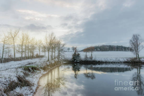 Wall Art - Photograph - Snow Scene by Amanda Elwell