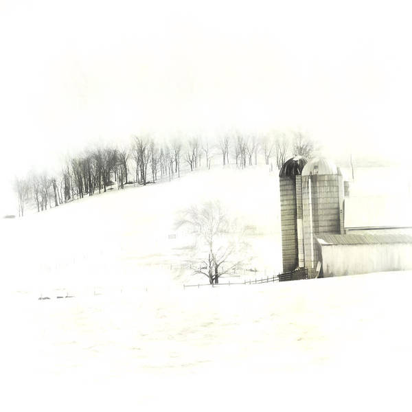 Wall Art - Photograph - Snow Scene by Kathy Jennings