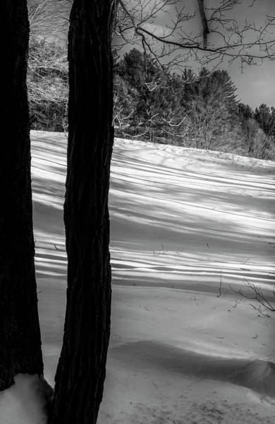Photograph - Snow Shadows by Tom Singleton
