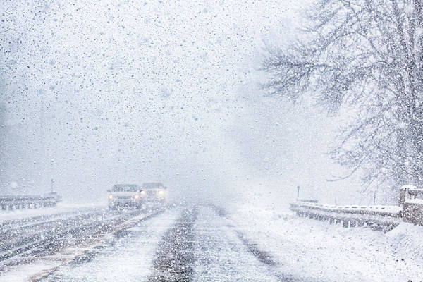 Photograph - Snow Squall Driving In Canada by Tatiana Travelways