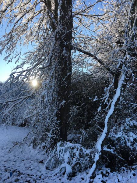 Wall Art - Photograph - Snow Sunrise 2 by Kevin Wheeler
