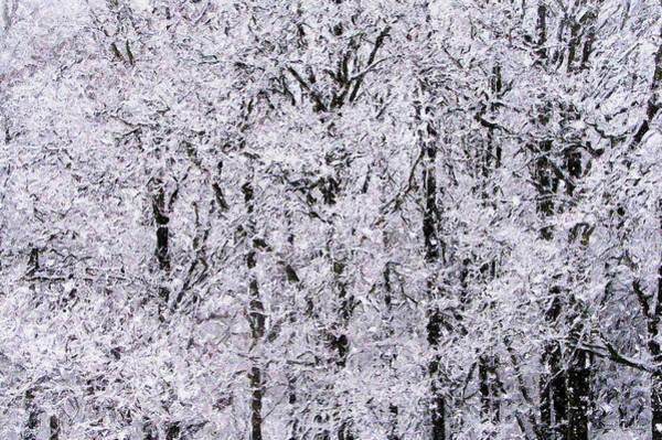 Digital Art - Snow Swept by Julian Perry