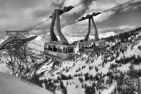 Photograph - Snowbird Hidden Peak Trams Black And White by Adam Jewell