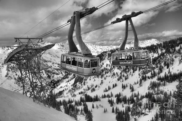 Photograph - Snowbird Trams Meet Black And White by Adam Jewell