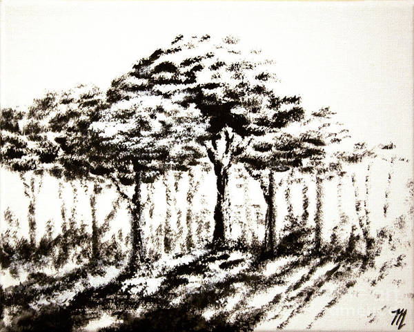 Painting - Snowblind by Tim Musick