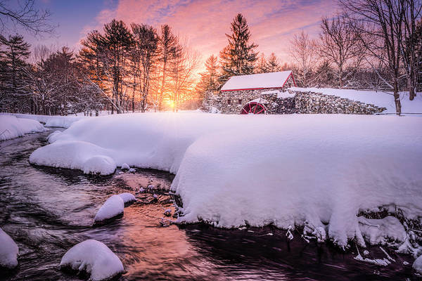 Photograph - Snowbound Dawn by Thomas Gaitley