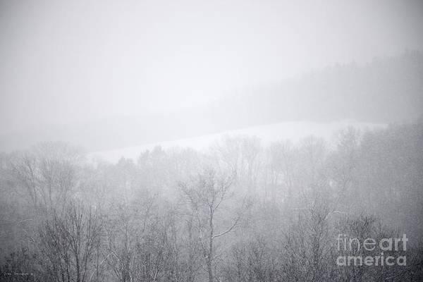 Wall Art - Photograph - Snowbound by John Stephens