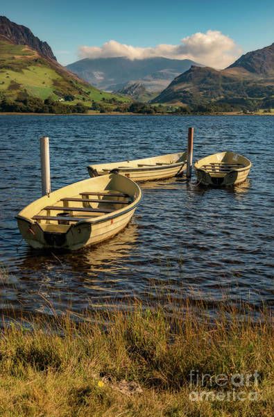 Moor Photograph - Snowdon From Llyn Nantlle by Adrian Evans
