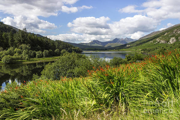 Photograph - Snowdon View by Ian Mitchell