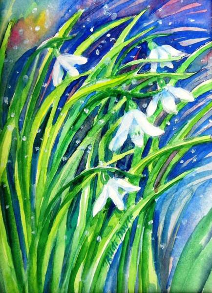 Snowdrop Painting - Little Snowdrops In The Snow  . by Trudi Doyle