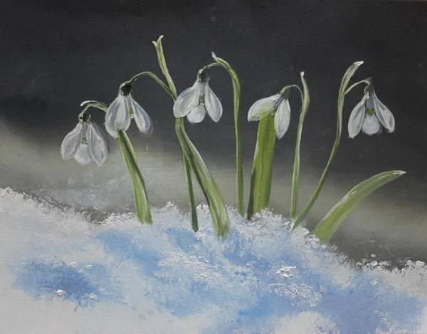 Snowdrop Painting - Snowdrops by Valeria Radzievska