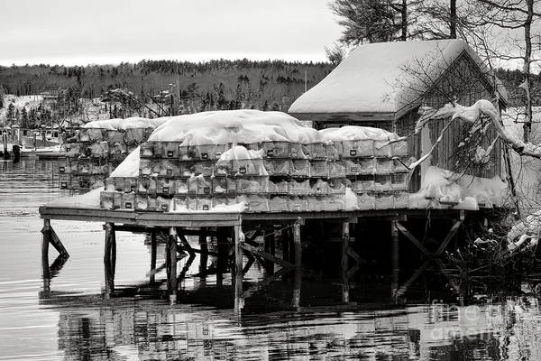 Photograph - Snowed In Lobstering by Olivier Le Queinec