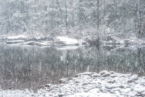 Photograph - Snowfall On Williams River  by Thomas R Fletcher