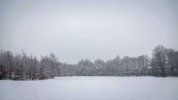 Photograph - Snowfall by Raelene Goddard