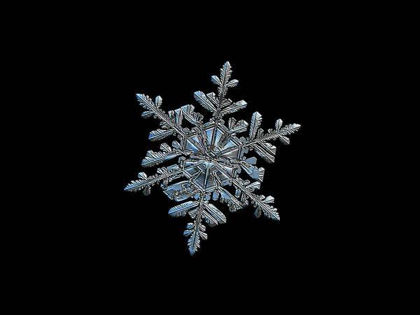 Photograph - Snowflake 2018-02-21 N2 Black by Alexey Kljatov
