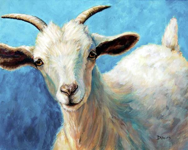Goat Painting - Snowflake, A Baby Cashmere Goat by Dottie Dracos