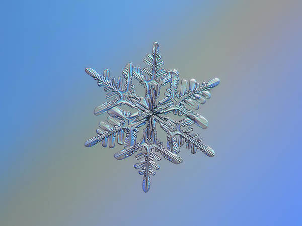 Photograph - Snowflake Macro Photo - 13 February 2017 - 1 by Alexey Kljatov