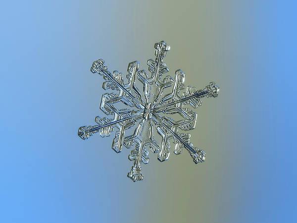 Photograph - Snowflake Macro Photo - 13 February 2017 - 2 by Alexey Kljatov