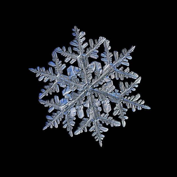 Snowflake Macro Photo - 13 February 2017 - 3 Black Art Print