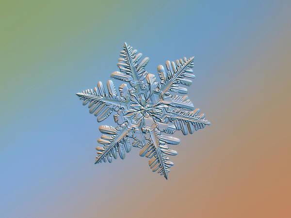 Wall Art - Photograph - Snowflake Macro Photo - 13 February 2017 - 5 by Alexey Kljatov