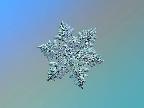 Photograph - Snowflake Macro Photo - 13 February 2017 - 5 Alt by Alexey Kljatov