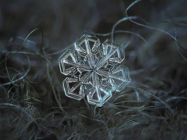 Snowflake Photo - Alcor Art Print