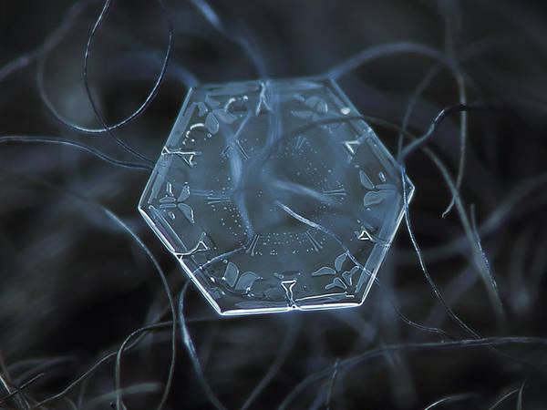 Photograph - Snowflake Photo - Alien's Data Disk by Alexey Kljatov