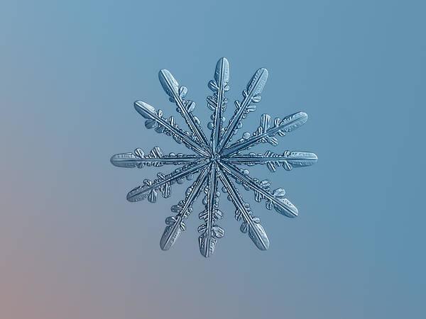 Snowflake Photo - Chrome Art Print