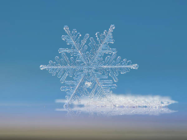 Photograph - Snowflake Photo - Cloud Number Nine by Alexey Kljatov