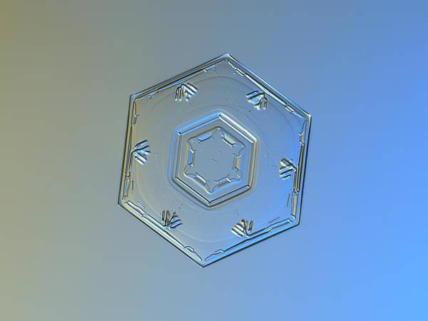 Photograph - Snowflake Photo - Cryogenia by Alexey Kljatov