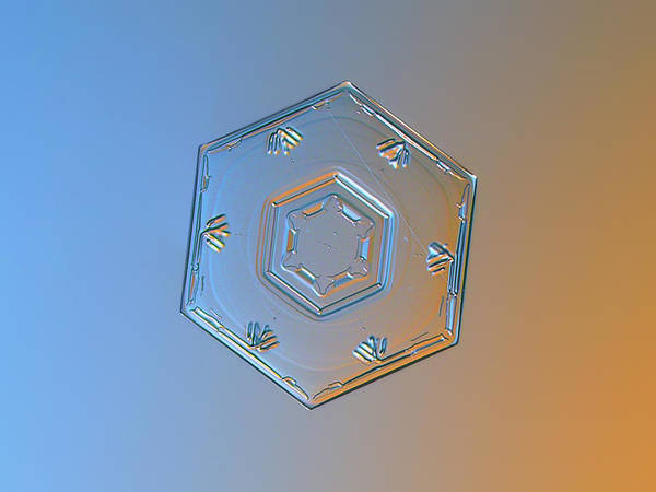 Photograph - Snowflake Photo - Cryogenia Alternate by Alexey Kljatov