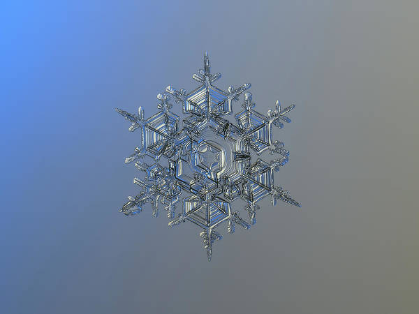 Snowflake Photo - Crystal Of Chaos And Order Art Print