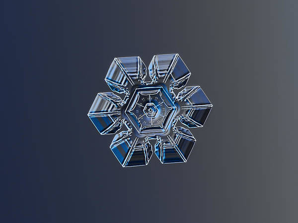 Photograph - Snowflake Photo - Crystal Of Darkness by Alexey Kljatov