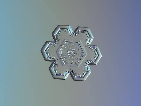 Photograph - Snowflake Photo - Flower Within A Flower by Alexey Kljatov