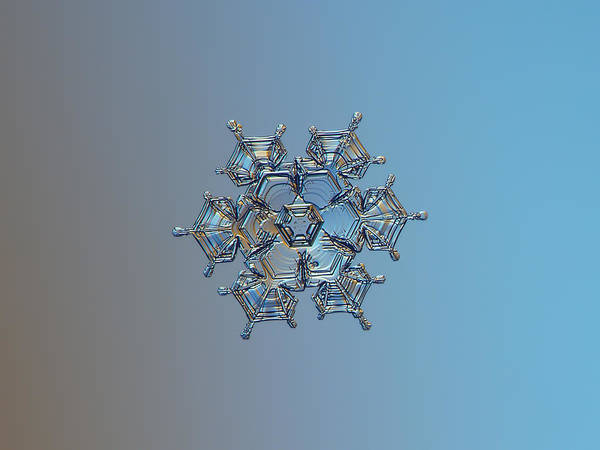 Snowflake Photo - Flying Castle Art Print