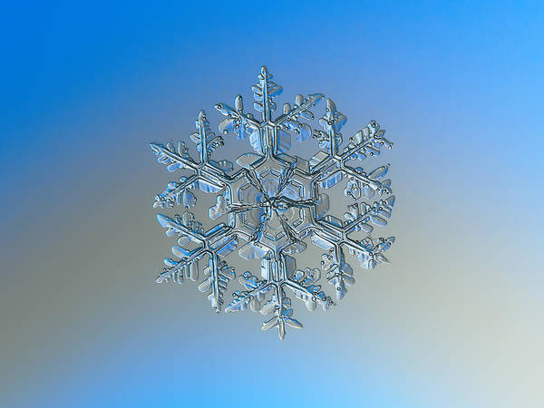 Snowflake Photo - Gardener's Dream Art Print