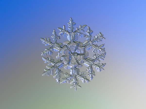 Snowflake Photo - Gardener's Dream Alternate Art Print