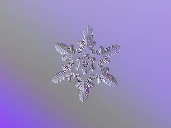 Snowflake Photo - Heart-powered Star Art Print
