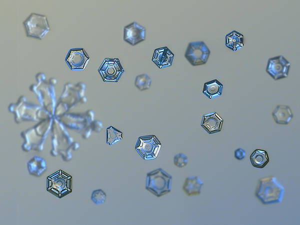 Photograph - Snowflake Photo - Ice Dust II by Alexey Kljatov