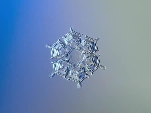 Snowflake Photo - Ice Relief Art Print