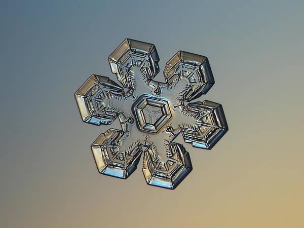 Photograph - Snowflake Photo - Massive Gold by Alexey Kljatov