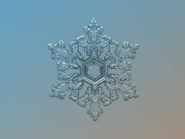 Snowflake Photo - Ornate Pattern Art Print